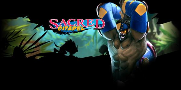 sacredcitadel01