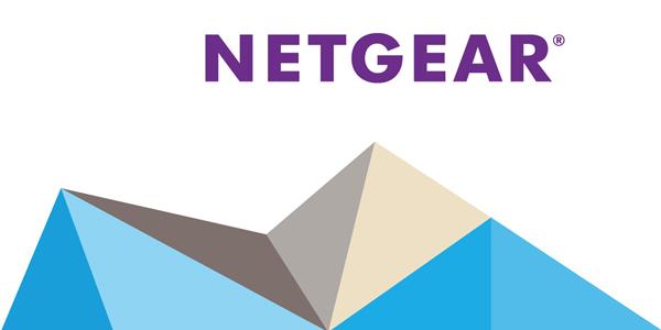 netgear_logo_detail