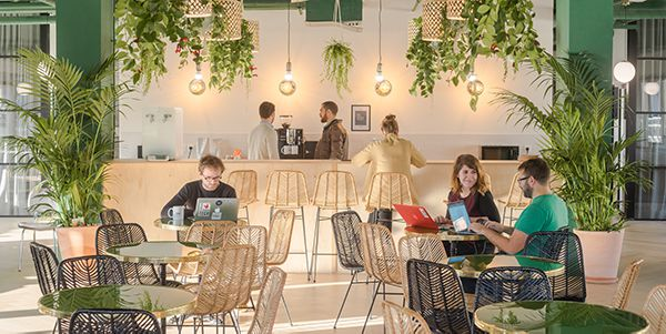 Le « Co »-Working éco-responsable de Morning Coworking !