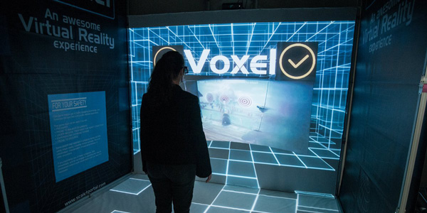 Scale-1 Portal Voxel